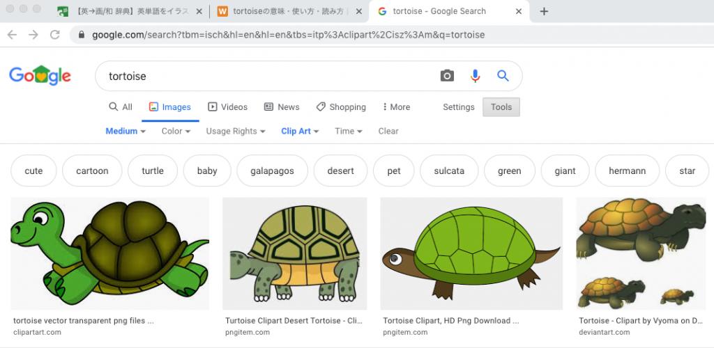 キーワード「tortoise」での検索結果