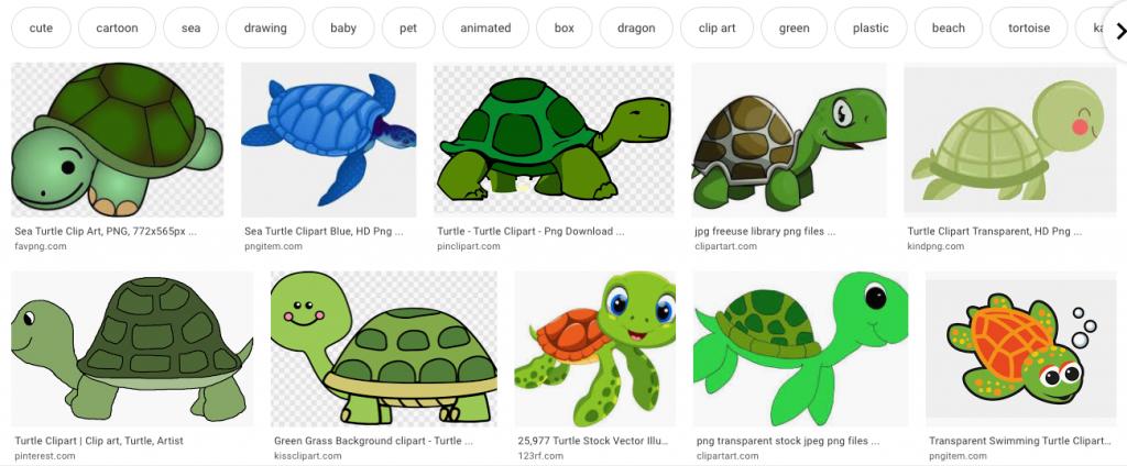 キーワード「turtle」での検索結果